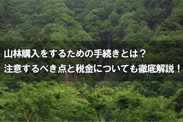 山林購入をするための手続きとは?注意するべき点と税金についても徹底解説!